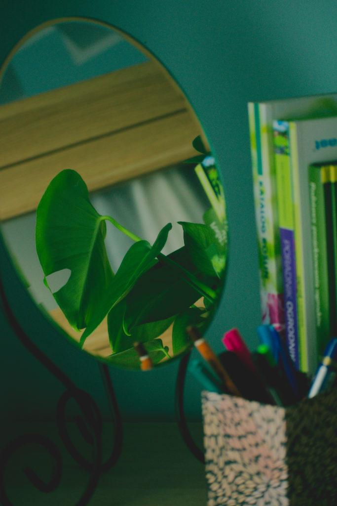 Zdjęcie przedstawia odbicie liścia monstery w lustrze